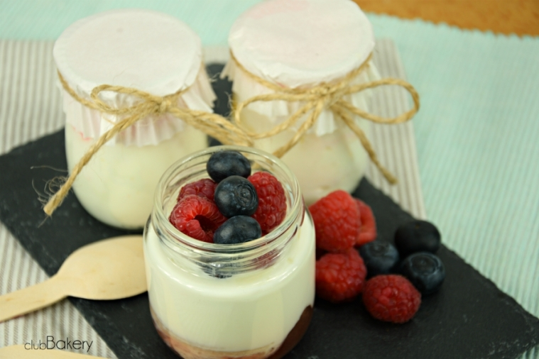 yogures11