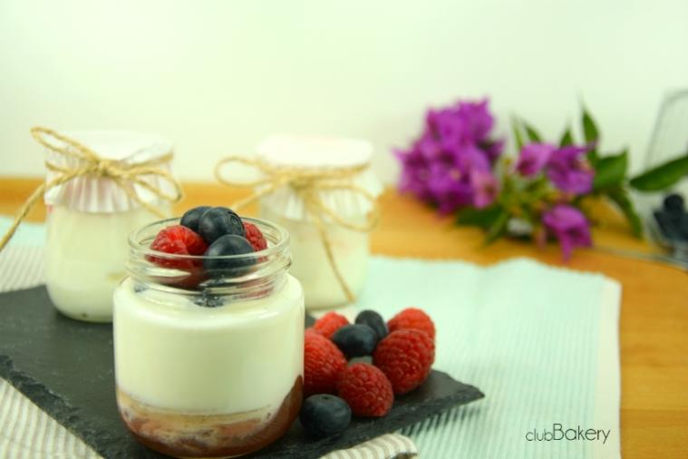 yogures5
